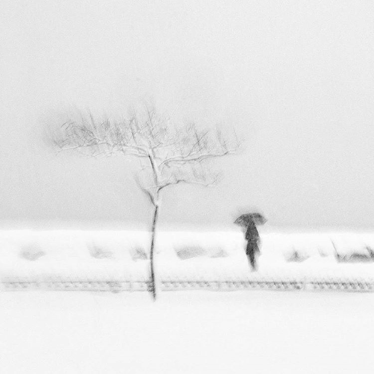 снег за окном